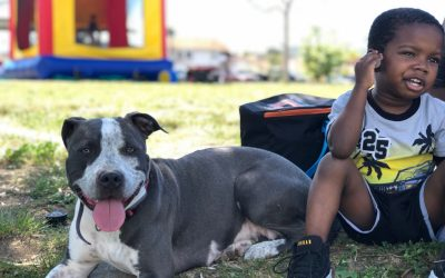 Basic Dog Training for Kids